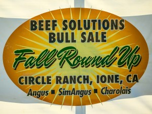 1509_Beef Solutions_006